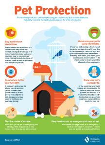 Caring for your Pets, Fur Friends